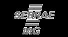 cliente-dataseekSEBRAE-MG